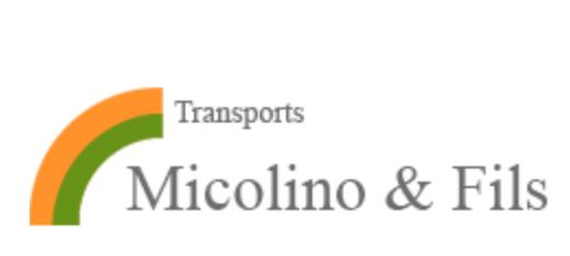 Logo-Micolini