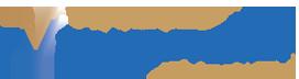 logo-v-vandivinit